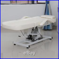 Electric Therapy Massage Bed Couch Chair Physio Beauty Table Facial Hole Tattoo